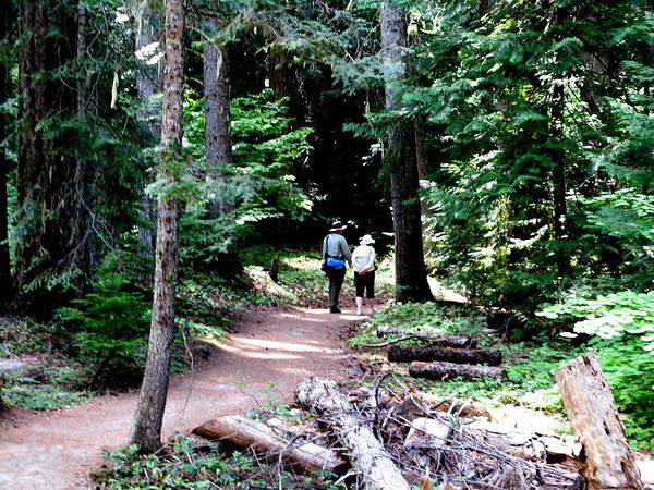 Hidden Lake Trail, August 19, 2012