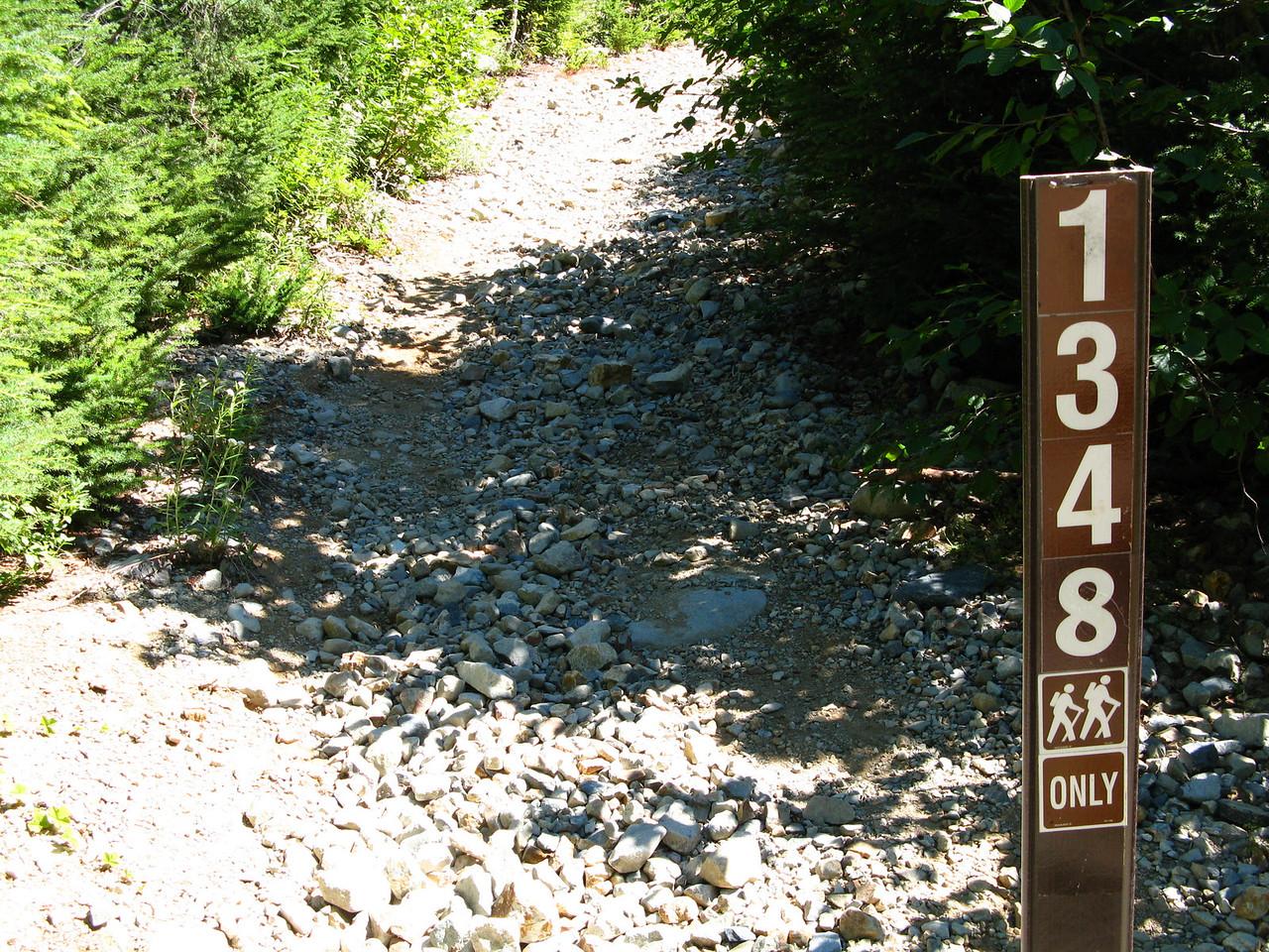 2012-09-02 Mt Cath 001