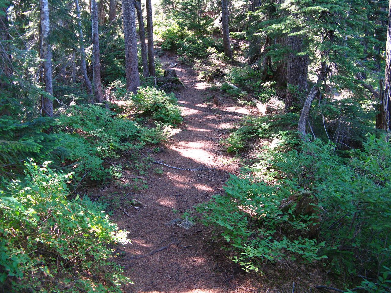 2012-09-02 Mt Cath 095