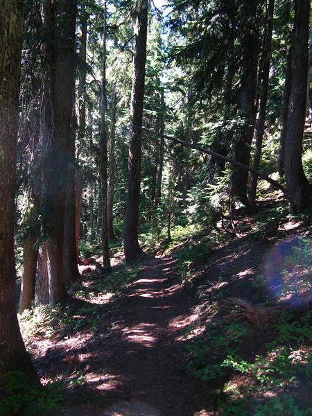 2012-09-02 Mt Cath 090
