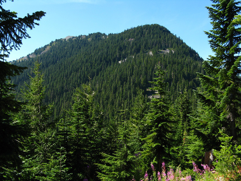 2012-09-02 Mt Cath 002