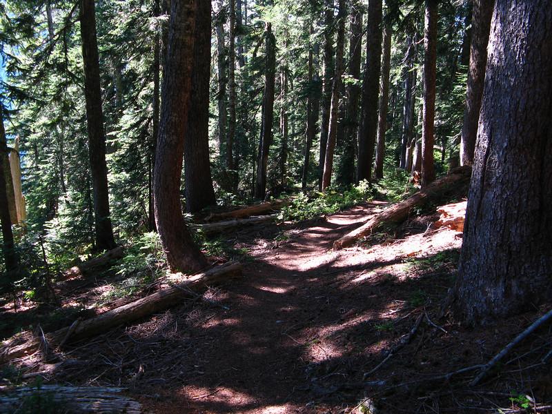 2012-09-02 Mt Cath 092