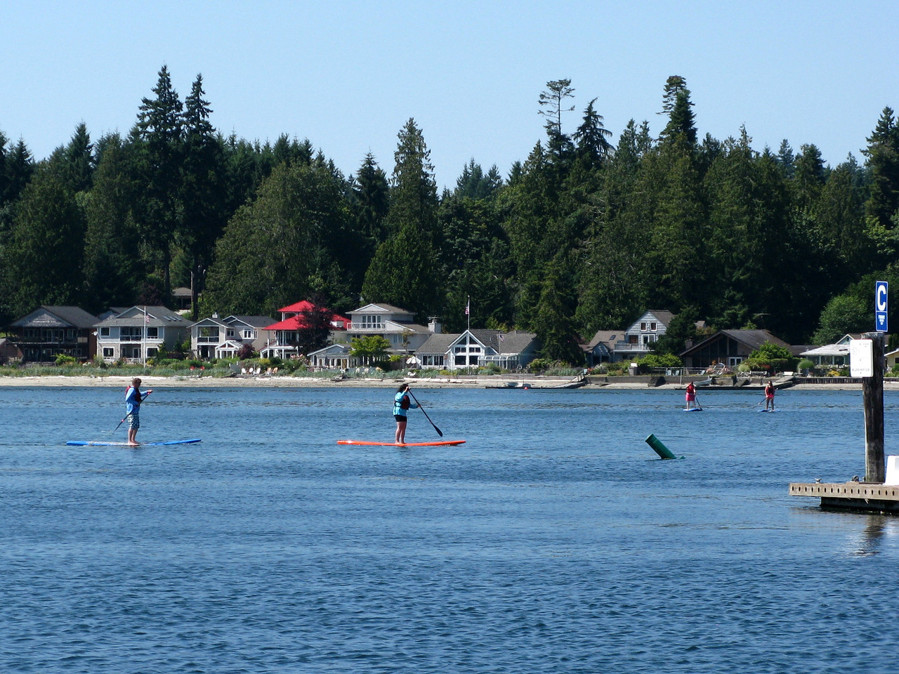 Paddling on boards on the bay at Kingston.