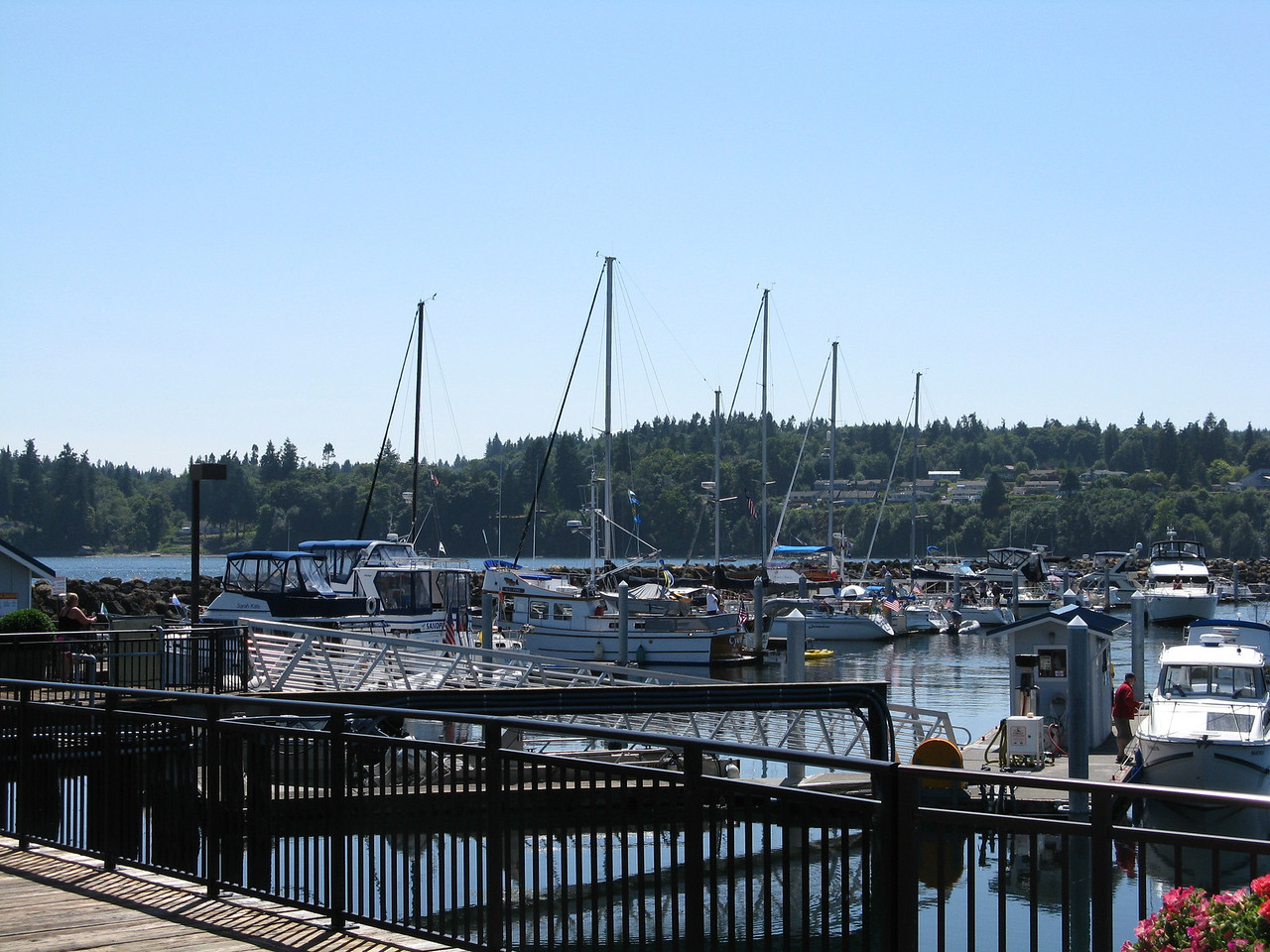 The Kingston Marina was crowded on this Saturday in mid-August.