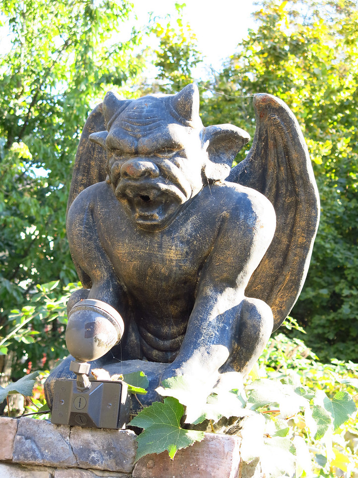 A gargoyle topped the pillar next to a gate at a house in Walla Walla.