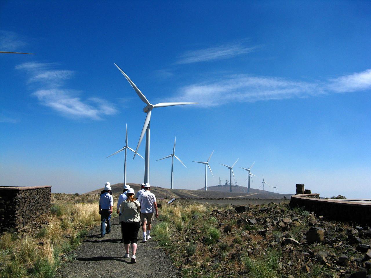 2012-08-14 wind 022