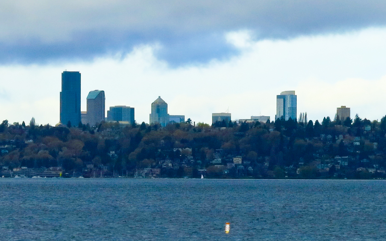 Looking west from Chism Beach, we can see across Lake Washington to the Seattle skyline.