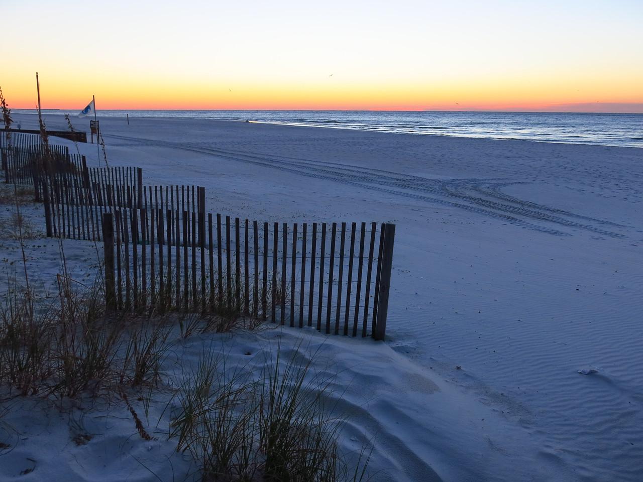 Dawn on Friday, November 8