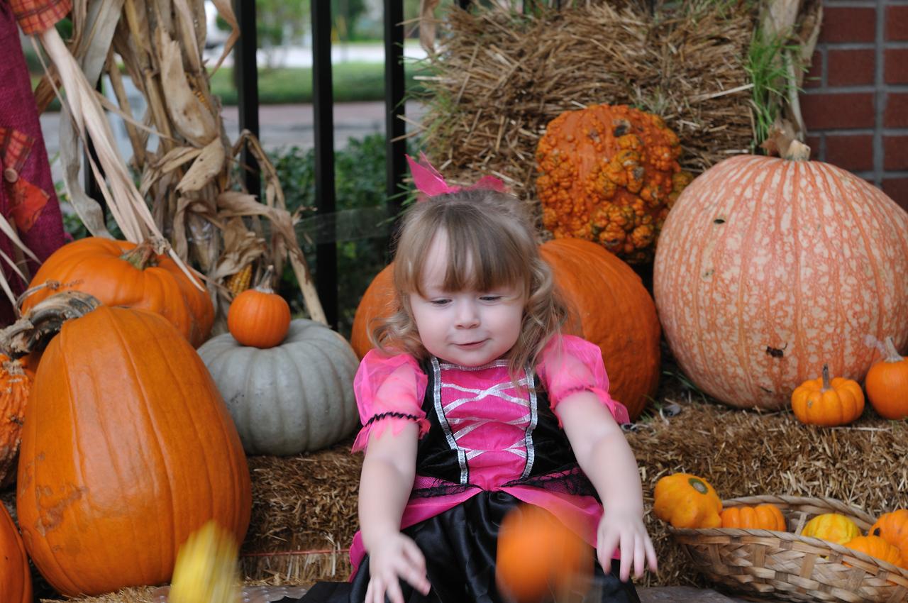 Hurling pumpkins