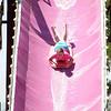 Slide-Millie_DSD_1999_1024x685