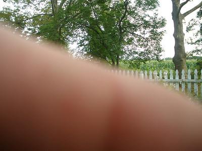 July 27, 2011 4909 Curly Hill Road, Doylestown, PA Arthur Kusek's finger. Nice.