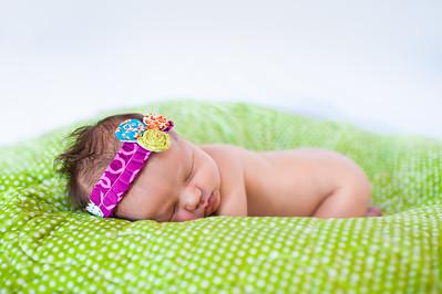 Baby Perri