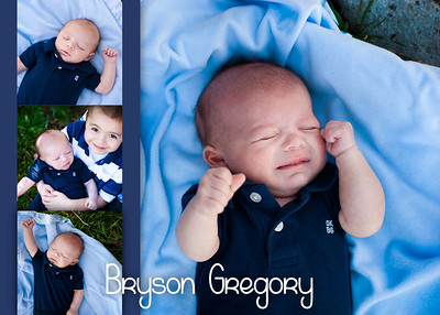Bryson2