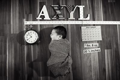 Axyl-1006