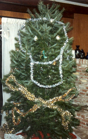 1988 pirate tree