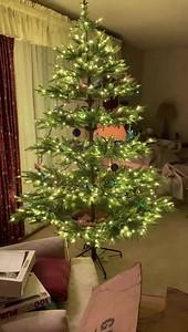 2019 video Ellen's Christmas Tree with lights