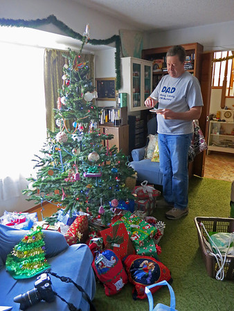2013 tree and gifts