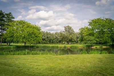 Colgate pond