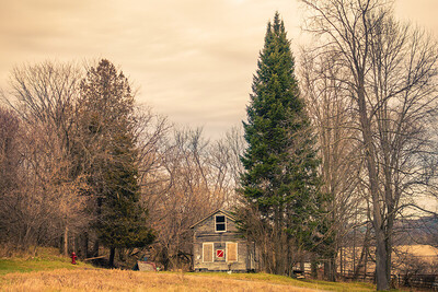 Abandoned house near 5 Trees