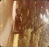 1977 Stay Scanned by Steve_00016A