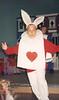 1993 steve white rabbit