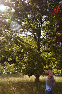the oak tree mom planted as a baby soon before we moved