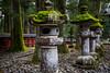 Nikko - Tosho-gu Shrine grounds