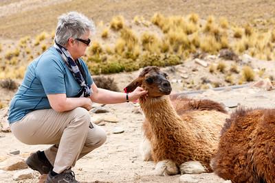 2016 Peru & Ecuador