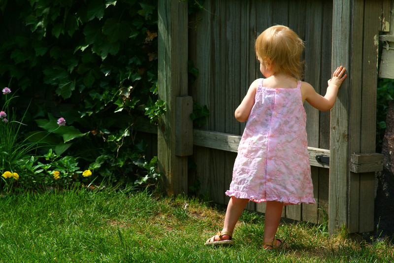 Toddler in the yard.