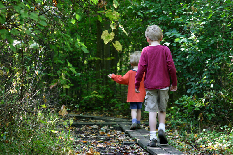 Brothers follow along a narrow wooded trail.