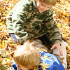 Brothers wrestle in the autumn leaves.