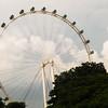 Singapore_tour-5