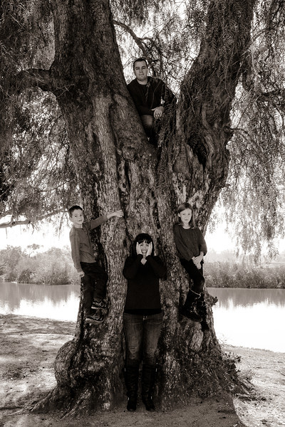 Family in a Tree