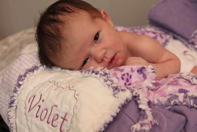 Violet 2 weeks 246