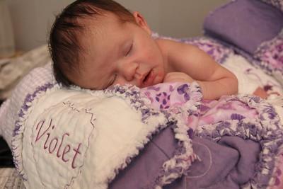 Violet 2 weeks 248