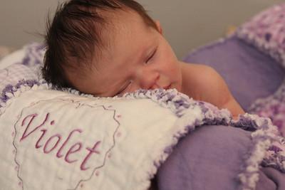 Violet 2 weeks 242
