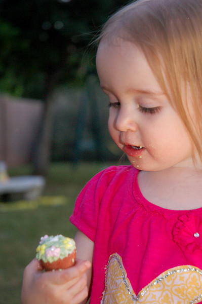 Niamh gnawing on a sugar flowerpot.