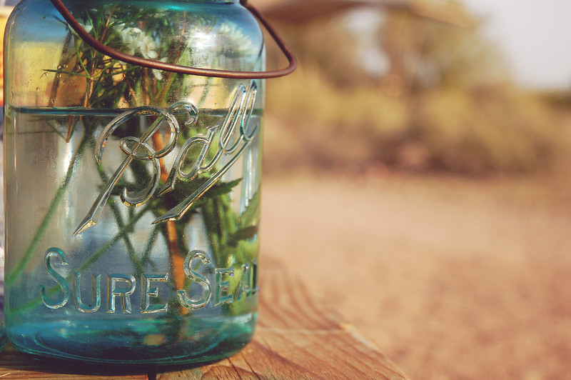 Love these old Ball jars I borrowed from my mom!