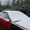 Snow_1Jan09_013