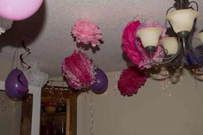 Emily's Birthday 2012