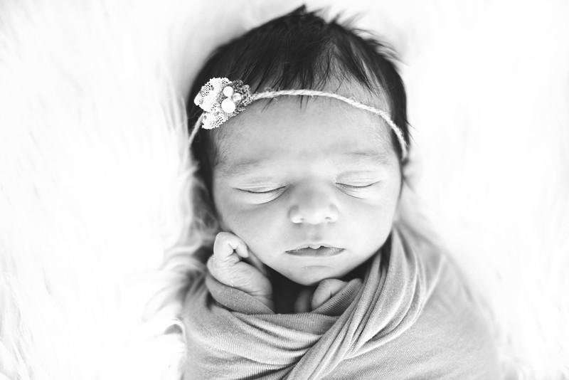 Lexi's Newborn