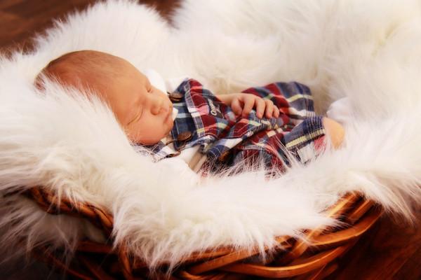 Chase Newborn Portraits