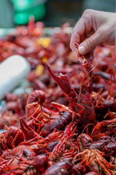 2013 Crawfish Boil