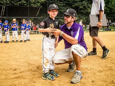 Hamlin Park Baseball 2014