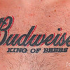 The color of Ink...  (ramdom guy at the Road Runner...   this was on his chest....  yikes!)