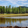 Dogtown Lake, Williams, AZ