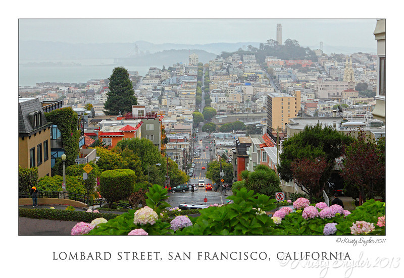 Lombard Street in the rain..  it is actually better in the rain, I think.  The colors were much brighter due to wetness of everything.  :)