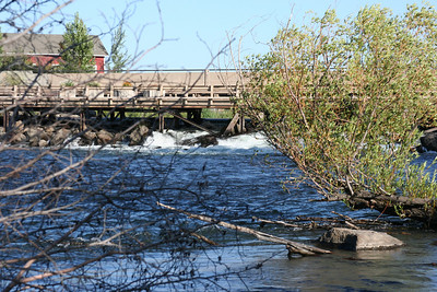 riverafternoonAug09 016