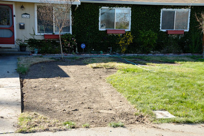 Removed sod