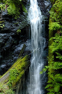 Background - April - Waterfall at the end of Fern Canyon Russian Gulch State Park